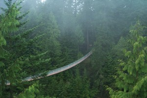 Capilano Bridge (photo: capbridge.com)